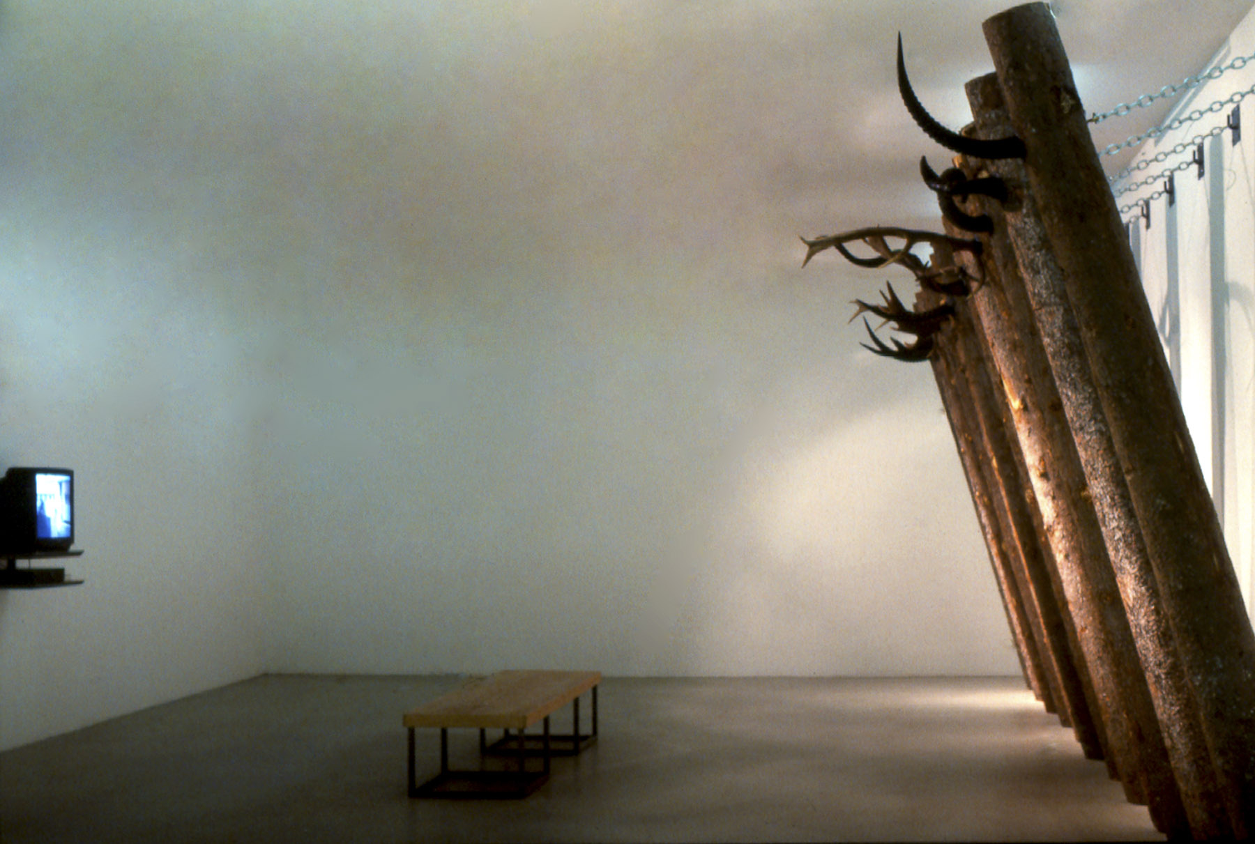 Out of Africa. 1996, Installation, tree trunks, animal horns, chains and video monitor with the film out of Africa. Kunst Hall Krems, Austria.